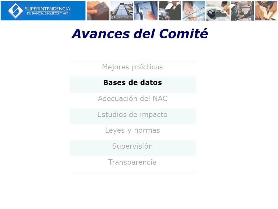 Avances del Comité Mejores prácticas Bases de datos Adecuación del NAC Estudios de impacto Leyes y normas Supervisión Transparencia