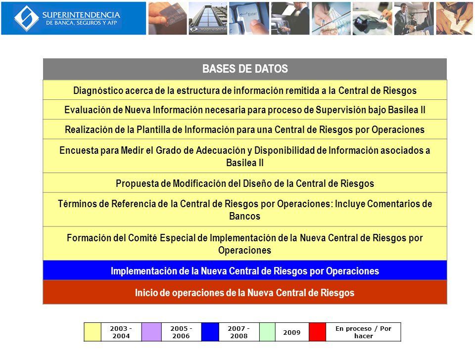 BASES DE DATOS Diagnóstico acerca de la estructura de información remitida a la Central de Riesgos Evaluación de Nueva Información necesaria para proc