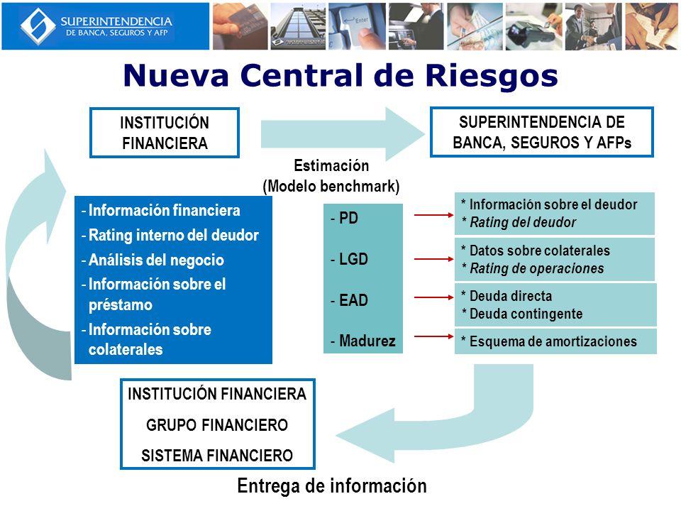 - Información financiera - Rating interno del deudor - Análisis del negocio - Información sobre el préstamo - Información sobre colaterales - PD - LGD