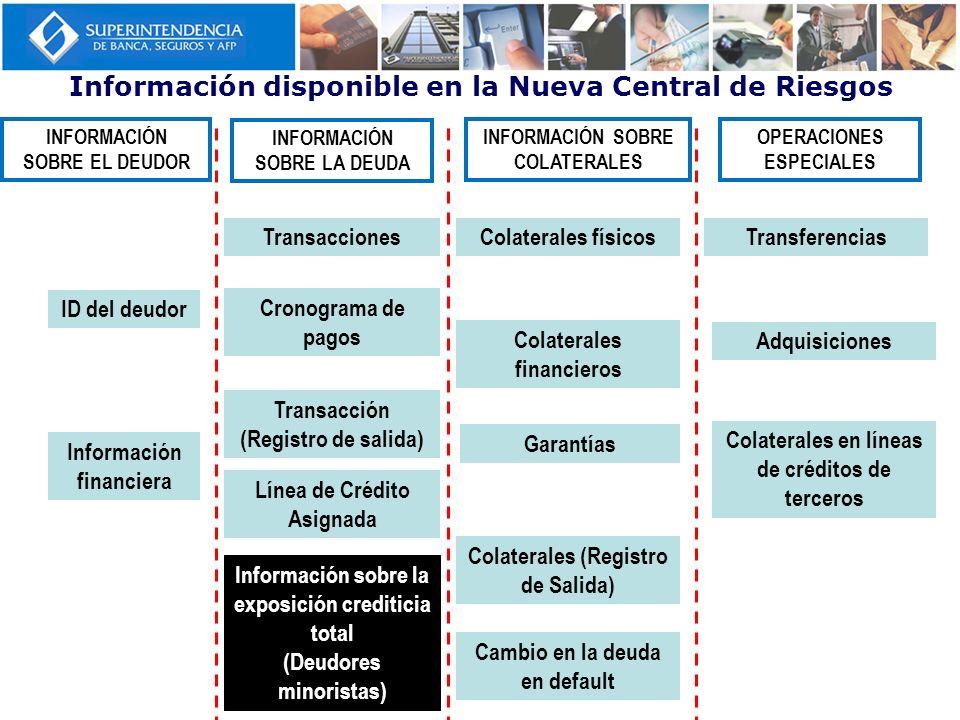 Información disponible en la Nueva Central de Riesgos ID del deudor Transacción (Registro de salida) Transacciones Cronograma de pagos Información fin