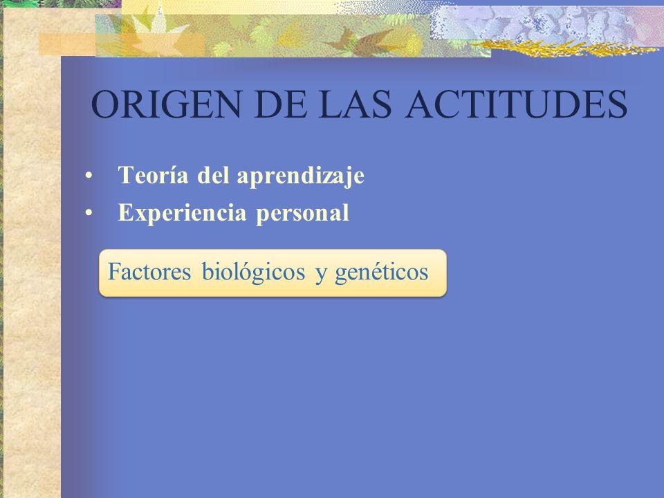 ORIGEN DE LAS ACTITUDES Teoría del aprendizaje Experiencia personal Factores biológicos y genéticos