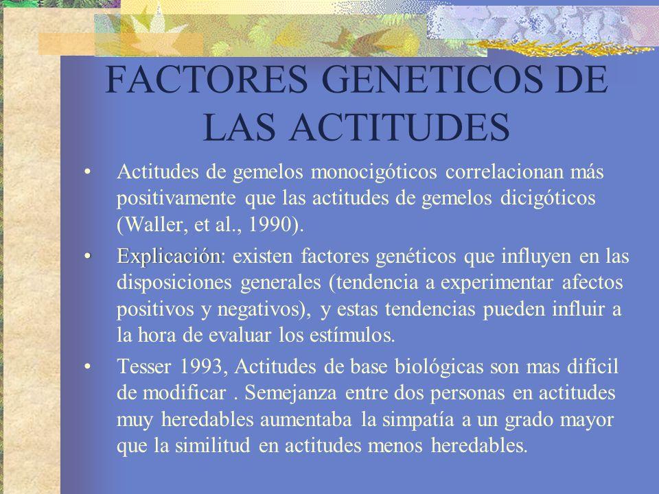 FACTORES GENETICOS DE LAS ACTITUDES Actitudes de gemelos monocigóticos correlacionan más positivamente que las actitudes de gemelos dicigóticos (Waller, et al., 1990).