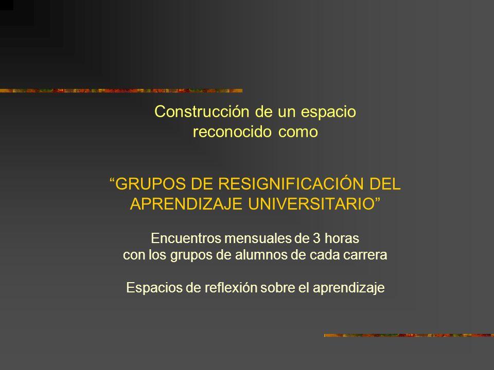 Construcción de un espacio reconocido como GRUPOS DE RESIGNIFICACIÓN DEL APRENDIZAJE UNIVERSITARIO Encuentros mensuales de 3 horas con los grupos de a