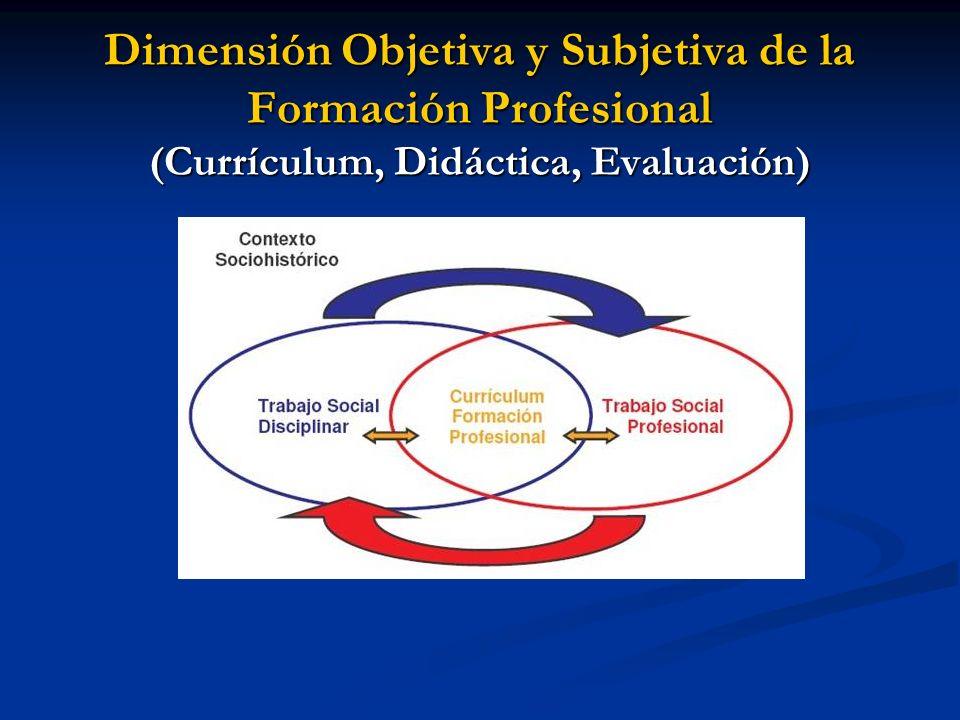 Dimensión Objetiva y Subjetiva de la Formación Profesional (Currículum, Didáctica, Evaluación)