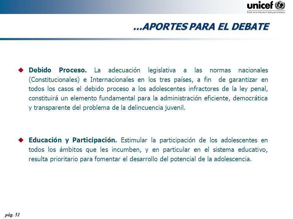 pág. 51...APORTES PARA EL DEBATE uDebido Proceso. La adecuación legislativa a las normas nacionales (Constitucionales) e Internacionales en los tres p