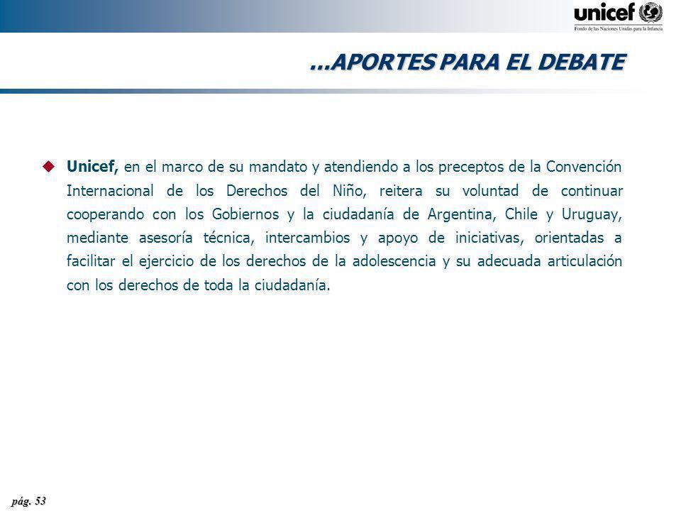pág. 53...APORTES PARA EL DEBATE uUnicef, en el marco de su mandato y atendiendo a los preceptos de la Convención Internacional de los Derechos del Ni