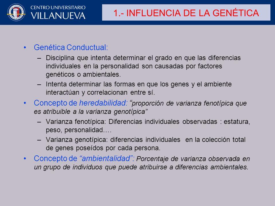 1.- INFLUENCIA DE LA GENÉTICA Genética Conductual: –Disciplina que intenta determinar el grado en que las diferencias individuales en la personalidad