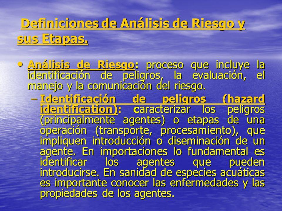 Definiciones de Análisis de Riesgo y sus Etapas. Definiciones de Análisis de Riesgo y sus Etapas. Análisis de Riesgo: proceso que incluye la identific