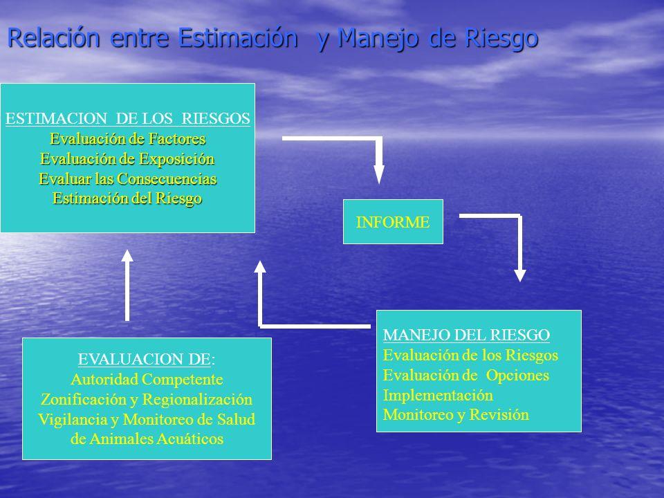 Relación entre Estimación y Manejo de Riesgo ESTIMACION DE LOS RIESGOS Evaluación de Factores Evaluación de Exposición Evaluar las Consecuencias Estim