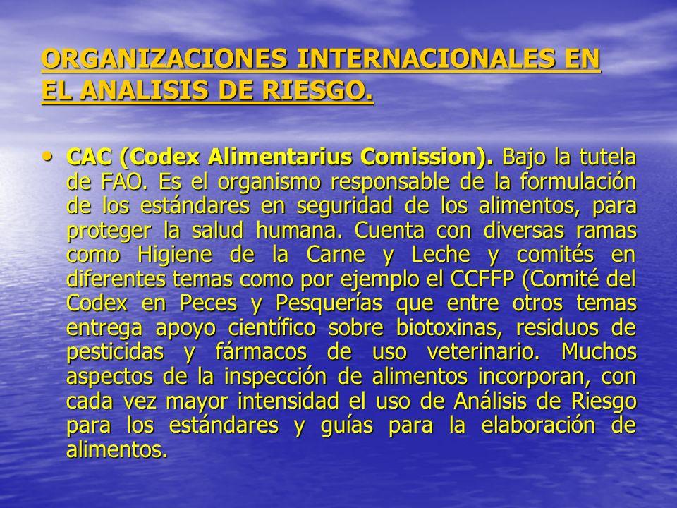 ORGANIZACIONES INTERNACIONALES EN EL ANALISIS DE RIESGO. CAC (Codex Alimentarius Comission). Bajo la tutela de FAO. Es el organismo responsable de la
