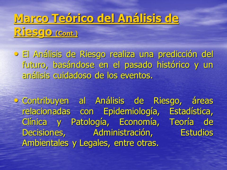 Marco Teórico del Análisis de Riesgo (Cont.) El Análisis de Riesgo no reemplaza la experiencia empírica, por el contrario, con frecuencia gran cantidad de información se obtiene a partir de juicios de expertos.
