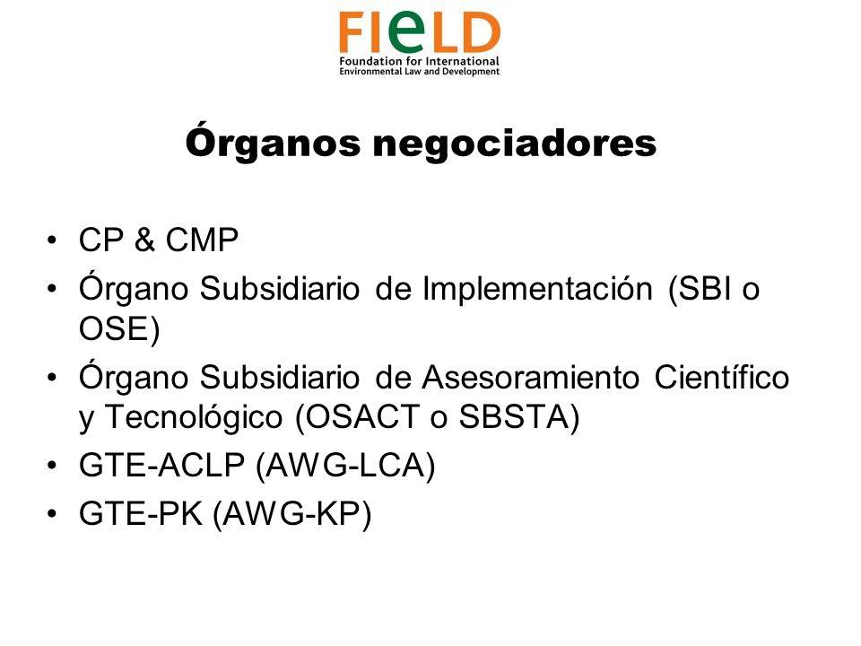 CP & CMP Órgano Subsidiario de Implementación (SBI o OSE) Órgano Subsidiario de Asesoramiento Científico y Tecnológico (OSACT o SBSTA) GTE-ACLP (AWG-LCA) GTE-PK (AWG-KP) Órganos negociadores