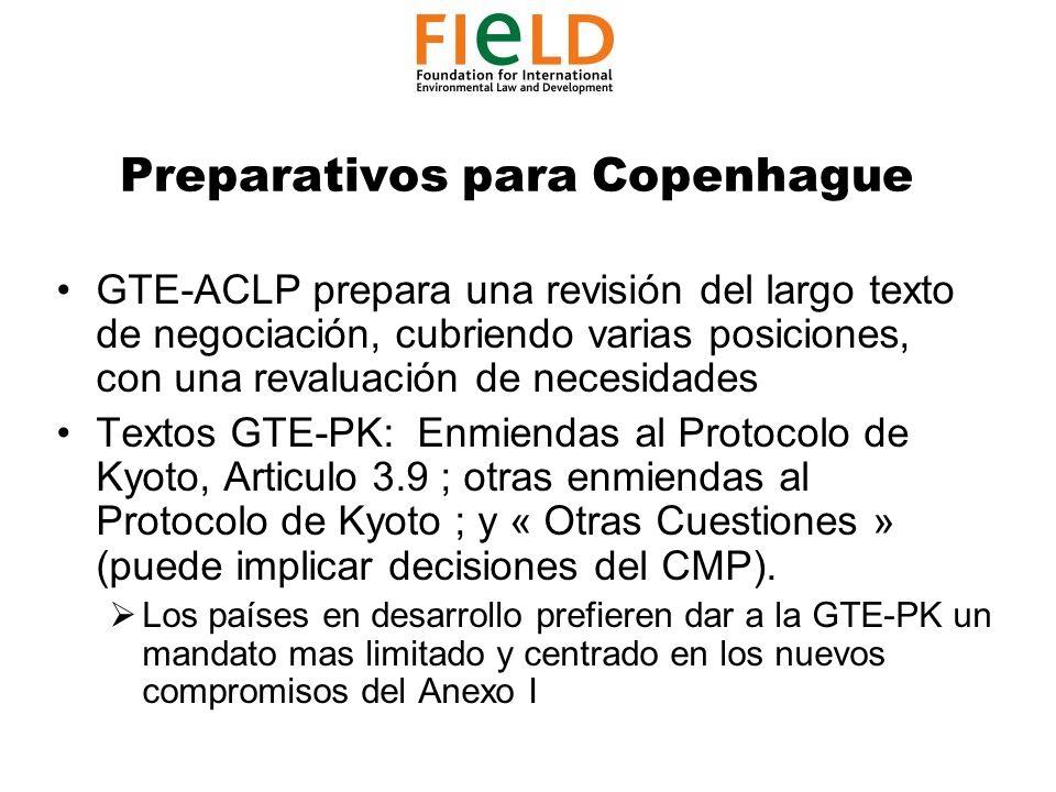 Preparativos para Copenhague GTE-ACLP prepara una revisión del largo texto de negociación, cubriendo varias posiciones, con una revaluación de necesidades Textos GTE-PK: Enmiendas al Protocolo de Kyoto, Articulo 3.9 ; otras enmiendas al Protocolo de Kyoto ; y « Otras Cuestiones » (puede implicar decisiones del CMP).
