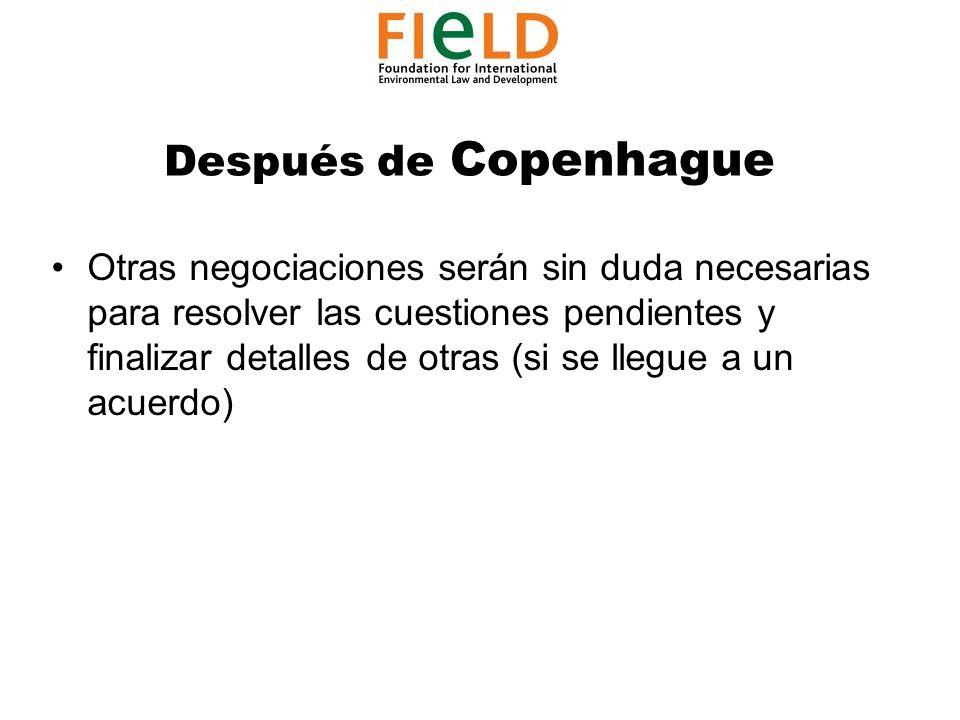 Después de Copenhague Otras negociaciones serán sin duda necesarias para resolver las cuestiones pendientes y finalizar detalles de otras (si se llegue a un acuerdo)