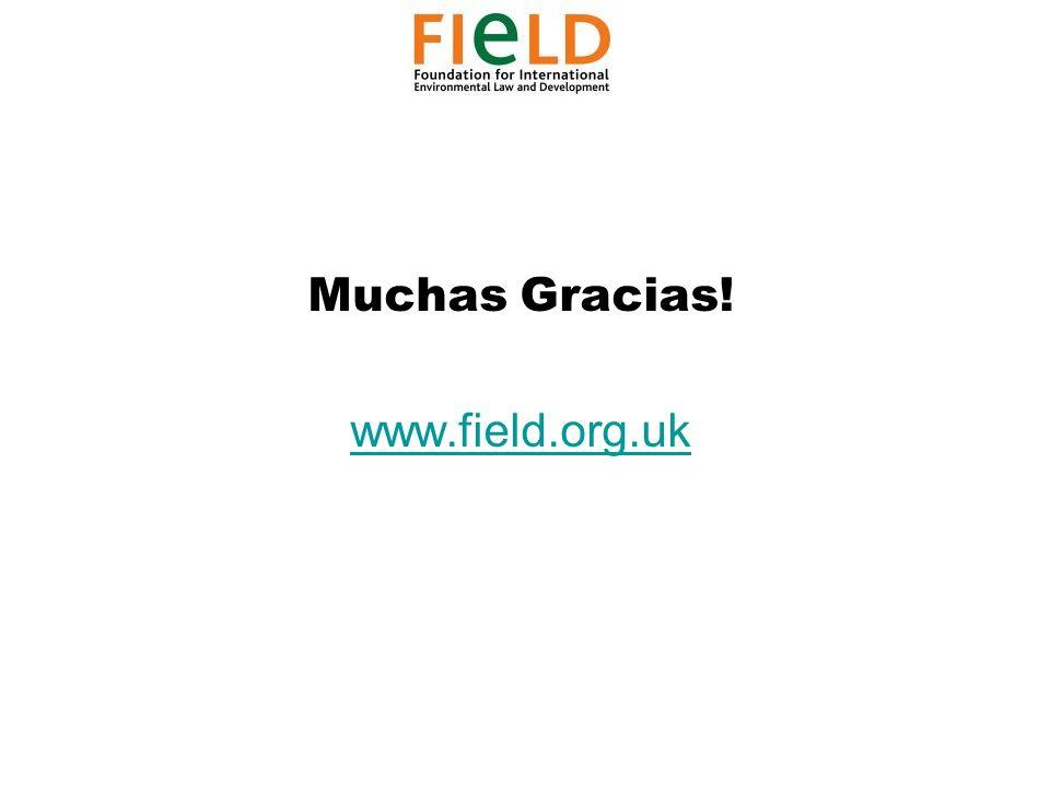 Muchas Gracias! www.field.org.uk