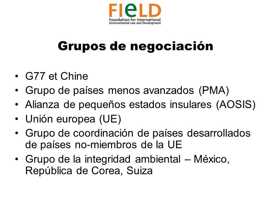 Grupos de negociación G77 et Chine Grupo de países menos avanzados (PMA) Alianza de pequeños estados insulares (AOSIS) Unión europea (UE) Grupo de coordinación de países desarrollados de países no-miembros de la UE Grupo de la integridad ambiental – México, República de Corea, Suiza