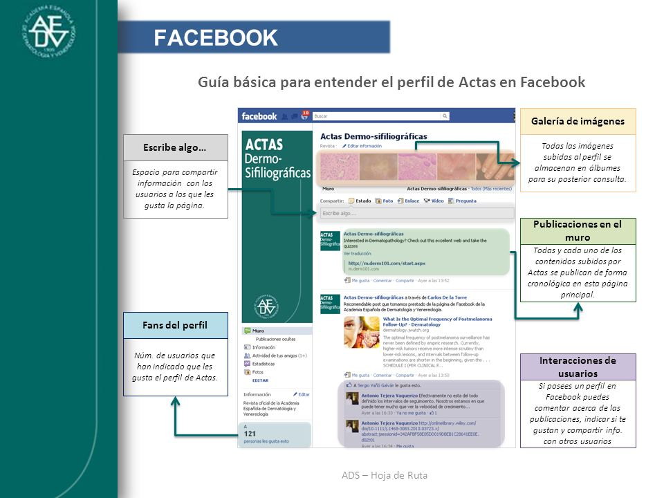 INTRODUCCIÓN ADS – Hoja de Ruta FACEBOOK Guía básica para entender el perfil de Actas en Facebook Galería de imágenes Todas las imágenes subidas al pe