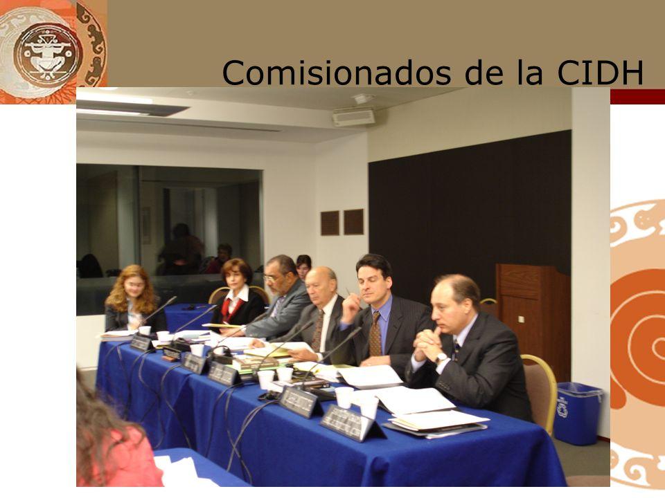 CIDH : integración actual Paolo Carozza (EE.UU) Luz Patricia Mejía (Venezuela) Felipe González (Chile) Víctor Abramovich (Argentina) Paulo Sergio Pinh