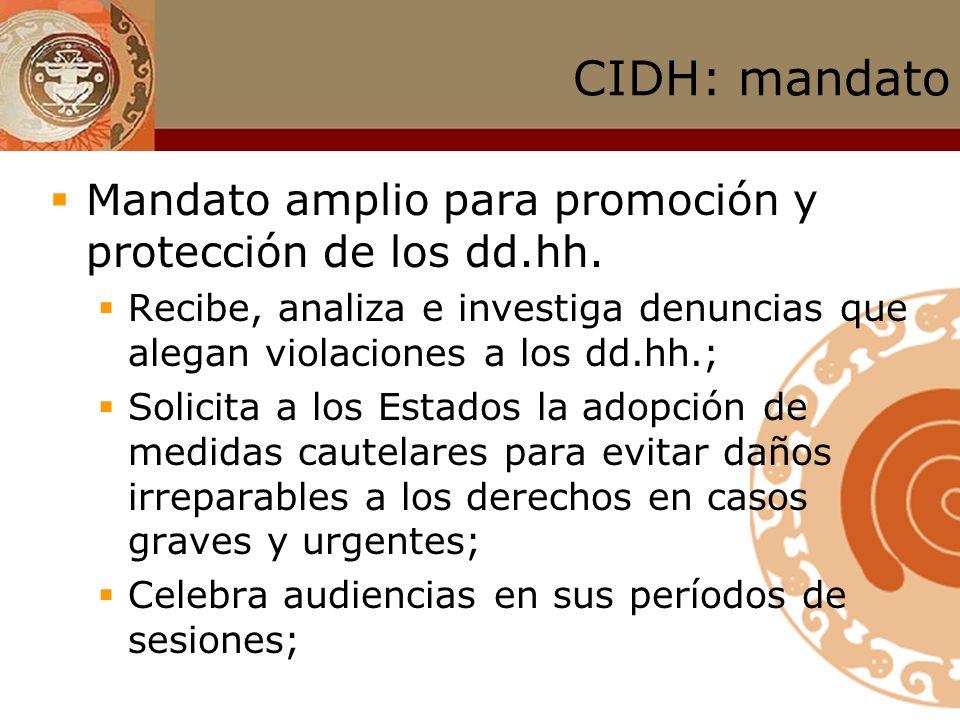Sistema Interamericano de Derechos Humanos Corte IDH : competencia consultiva Para qué sirven.