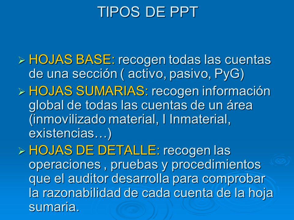 TIPOS DE PPT HOJAS BASE: recogen todas las cuentas de una sección ( activo, pasivo, PyG) HOJAS BASE: recogen todas las cuentas de una sección ( activo