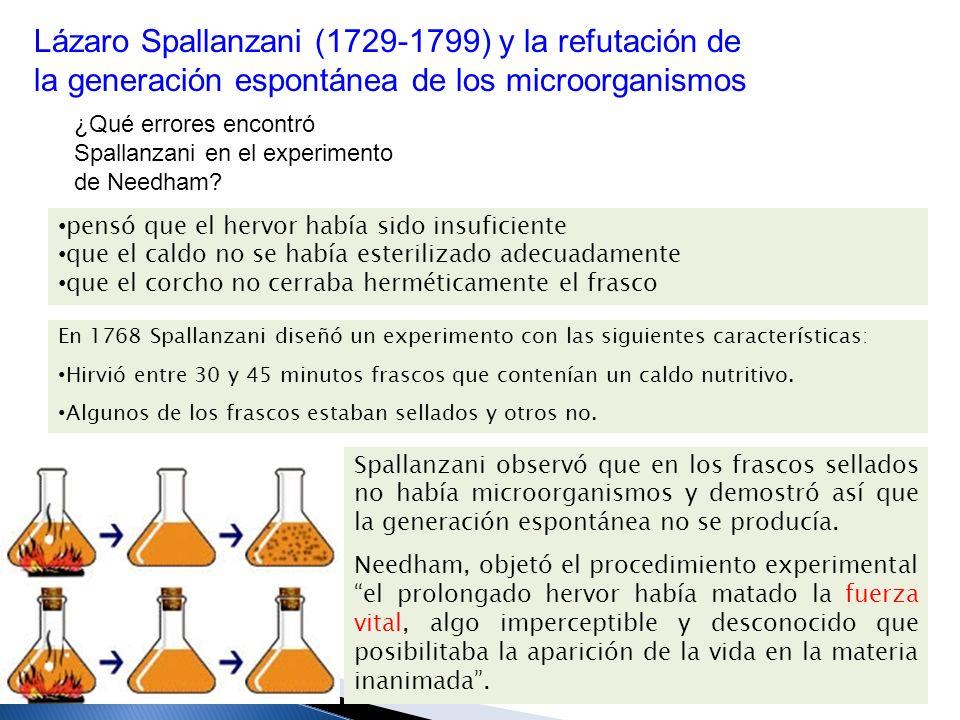 Pasteur usó matraces con cuello de cisne que permitían la entrada del oxígeno (elemento que se creía necesario para la vida), pero atrapaba los microorganismos.