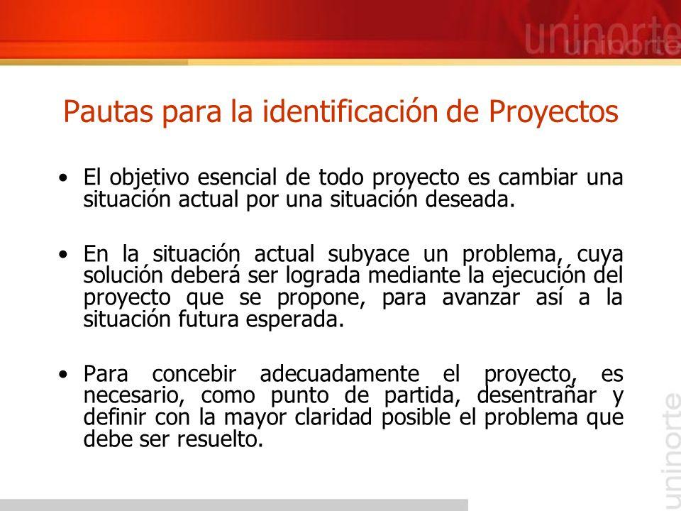 Pautas para la identificación de Proyectos El objetivo esencial de todo proyecto es cambiar una situación actual por una situación deseada. En la situ