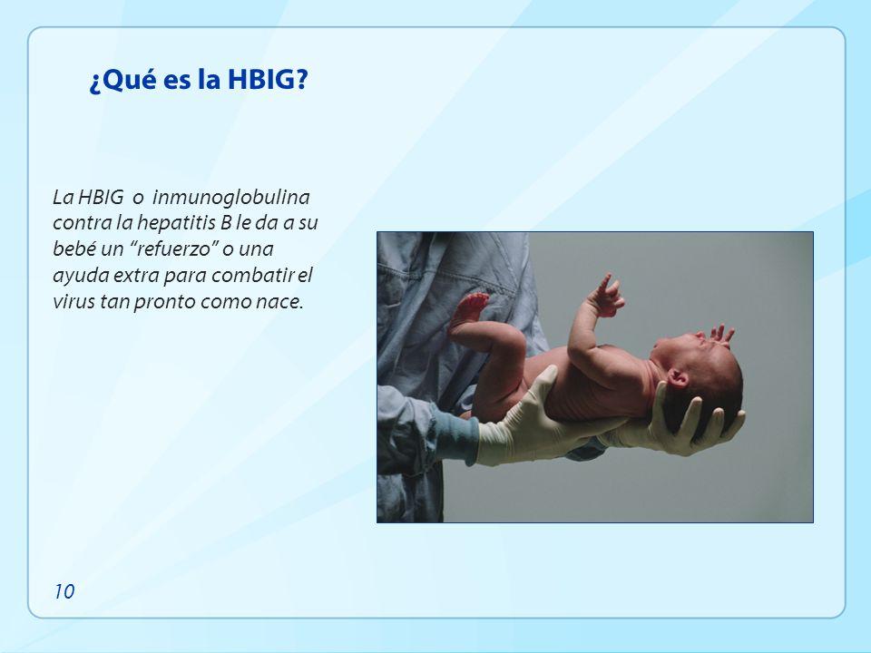 ¿Qué es la HBIG? La HBIG o inmunoglobulina contra la hepatitis B le da a su bebé un refuerzo o una ayuda extra para combatir el virus tan pronto como