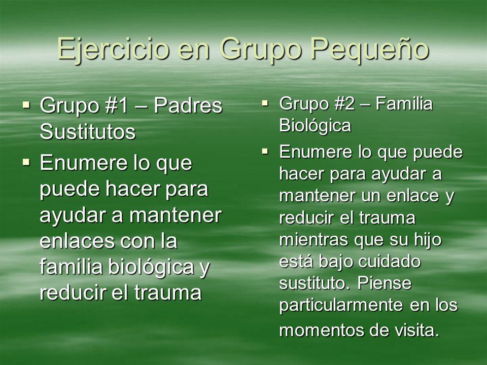 Ejercicio en Grupo Pequeño Grupo #1 – Padres Sustitutos Grupo #1 – Padres Sustitutos Enumere lo que puede hacer para ayudar a mantener enlaces con la