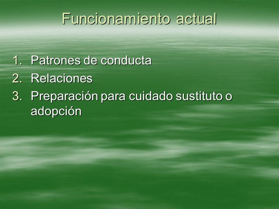 Funcionamiento actual 1.Patrones de conducta 2.Relaciones 3.Preparación para cuidado sustituto o adopción