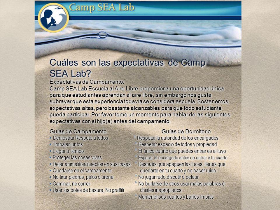 Cuáles son las expectativas de Camp SEA Lab? Expectativas de Campamento: Camp SEA Lab Escuela al Aire Libre proporciona una oportunidad única para que