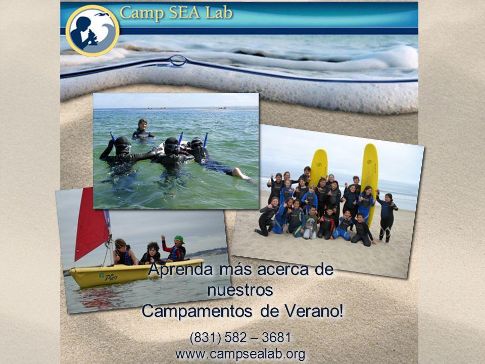 Aprenda más acerca de nuestros Campamentos de Verano! (831) 582 – 3681 www.campsealab.org
