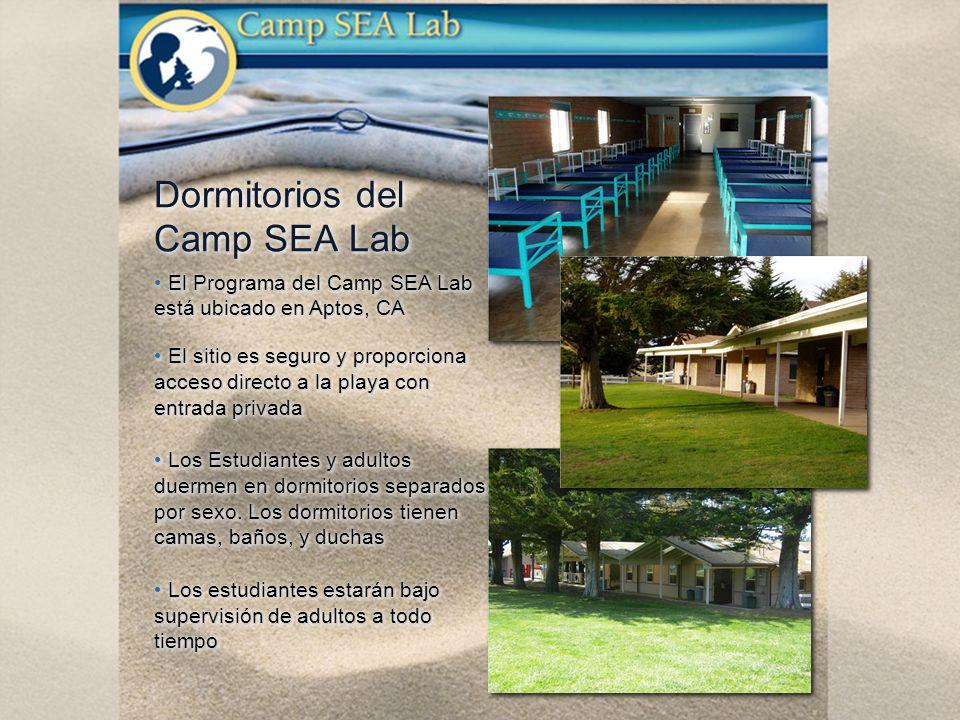 El Programa del Camp SEA Lab está ubicado en Aptos, CA El sitio es seguro y proporciona acceso directo a la playa con entrada privada El sitio es seguro y proporciona acceso directo a la playa con entrada privada Los Estudiantes y adultos duermen en dormitorios separados por sexo.