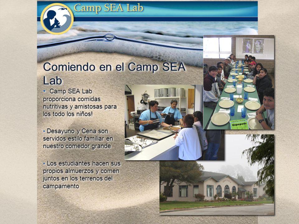 Camp SEA Lab proporciona comidas nutritivas y amistosas para los todo los niños.