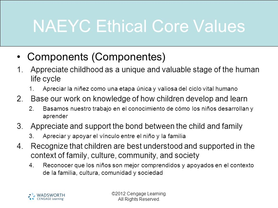 NAEYC Ethical Core Values Components (Componentes) 1.Appreciate childhood as a unique and valuable stage of the human life cycle 1.Apreciar la niñez c