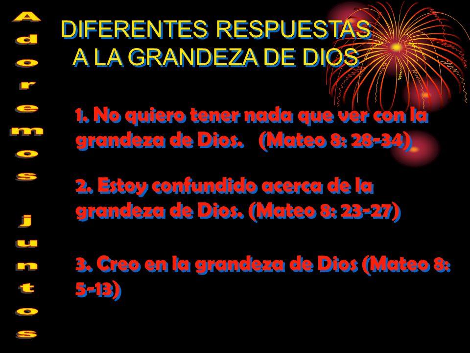 1. No quiero tener nada que ver con la grandeza de Dios. (Mateo 8: 28-34) DIFERENTES RESPUESTAS A LA GRANDEZA DE DIOS 2. Estoy confundido acerca de la