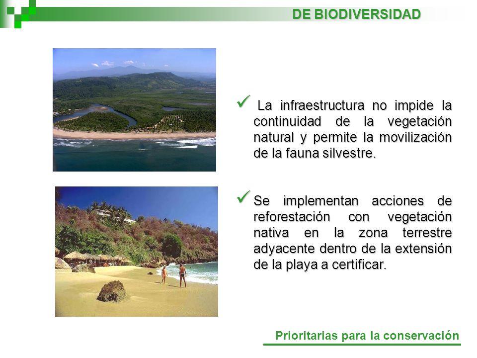 La infraestructura no impide la continuidad de la vegetación natural y permite la movilización de la fauna silvestre. La infraestructura no impide la