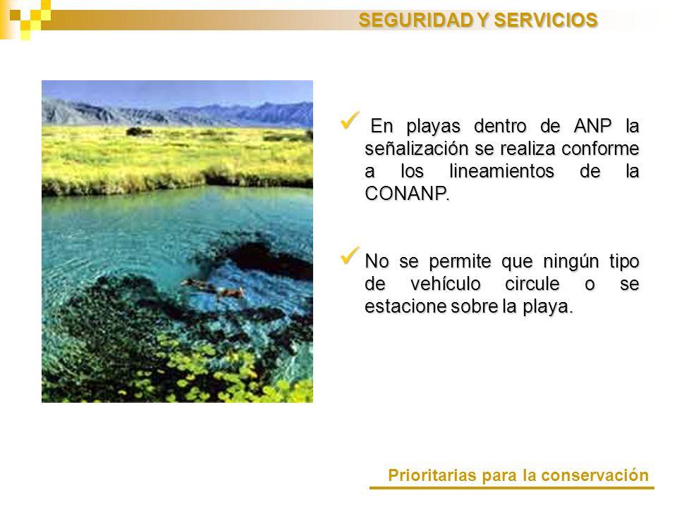 SEGURIDAD Y SERVICIOS En playas dentro de ANP la señalización se realiza conforme a los lineamientos de la CONANP. En playas dentro de ANP la señaliza