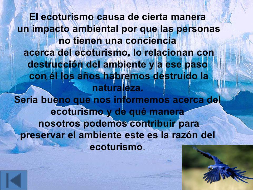 El ecoturismo es conocido también como turismo de vida silvestre, es muy importante para los ecologistas y personas que sienten amor por la naturaleza
