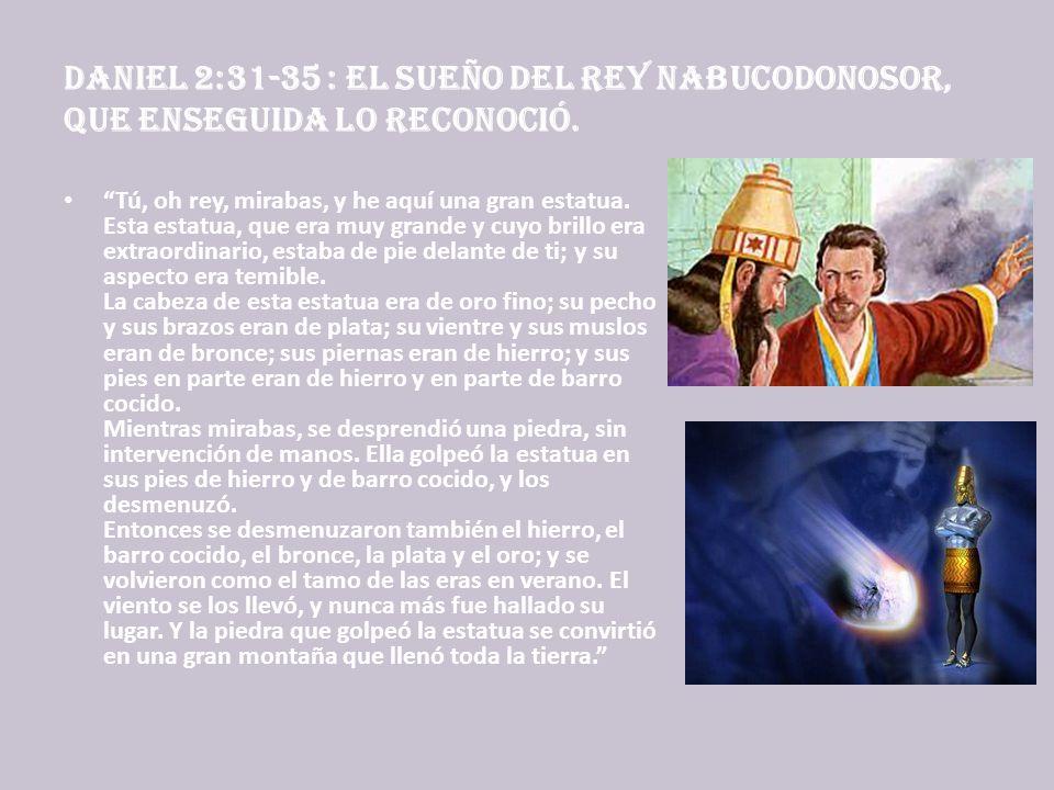 Daniel 2:31-35 : El sueño del rey Nabucodonosor, que enseguida lo reconoció.