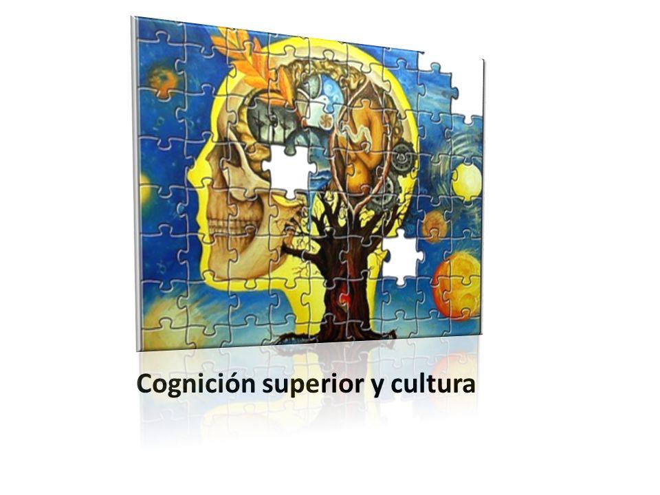 Cognición superior y cultura