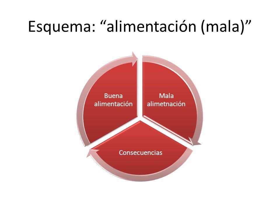 Esquema: alimentación (mala) Mala alimetnación Consecuencias Buena alimentación