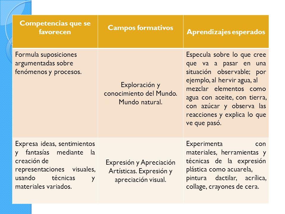 Competencias que se favorecen Campos formativos Aprendizajes esperados Formula suposiciones argumentadas sobre fenómenos y procesos.
