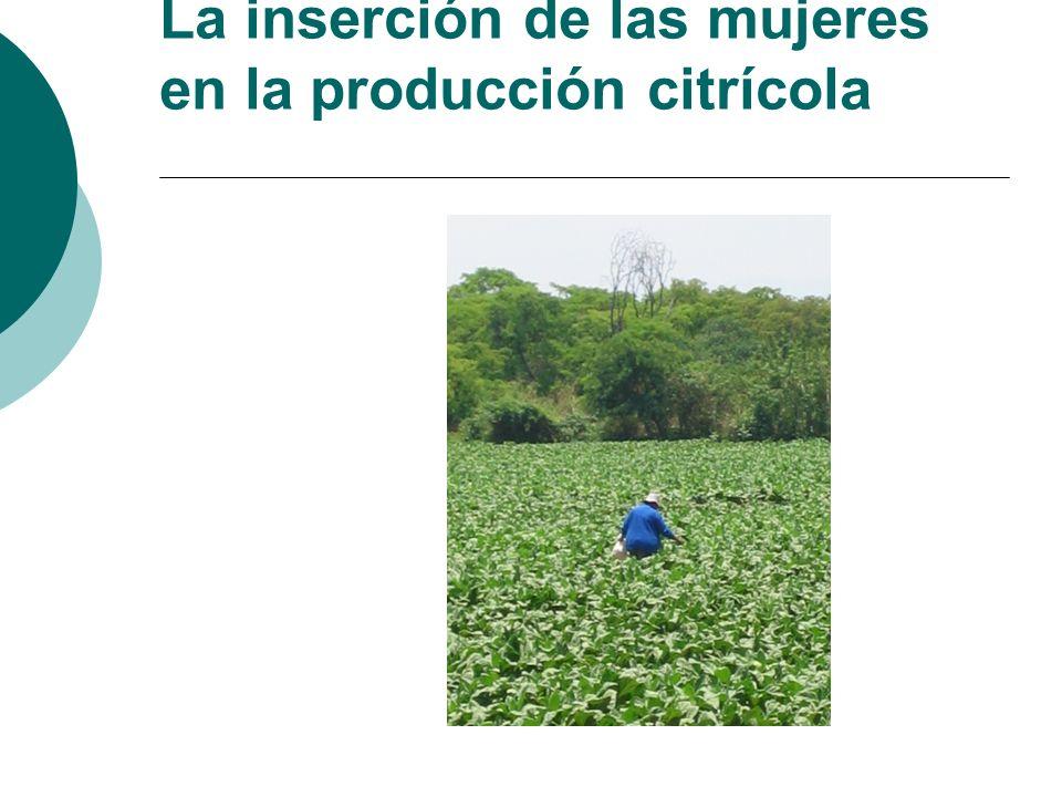 La inserción de las mujeres en la producción citrícola