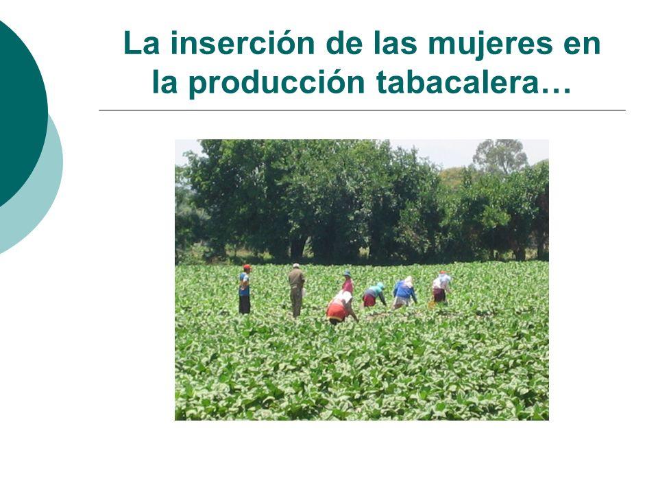 La inserción de las mujeres en la producción tabacalera…