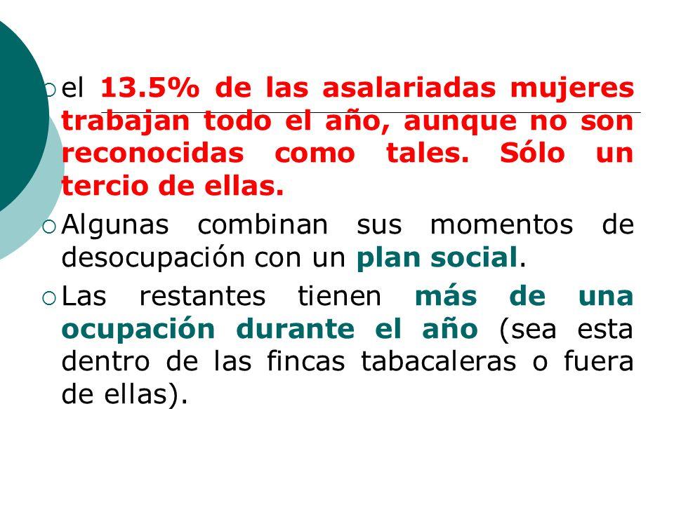 el 13.5% de las asalariadas mujeres trabajan todo el año, aunque no son reconocidas como tales.