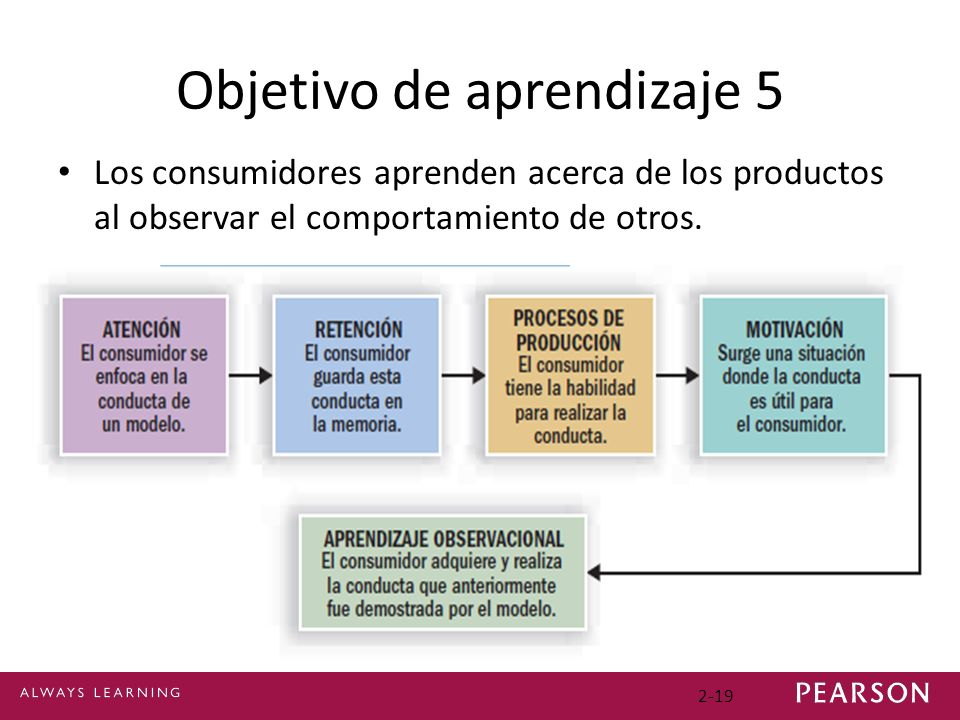 Objetivo de aprendizaje 5 Los consumidores aprenden acerca de los productos al observar el comportamiento de otros. 2-19
