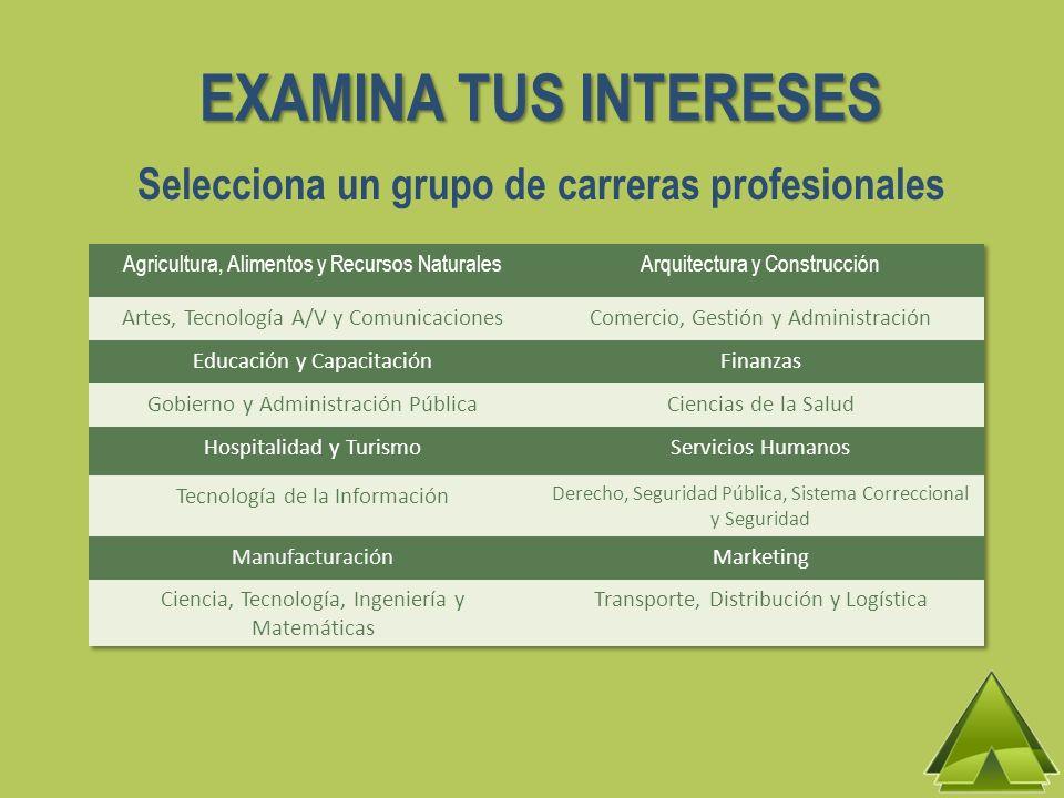 EXAMINA TUS INTERESES Selecciona un grupo de carreras profesionales