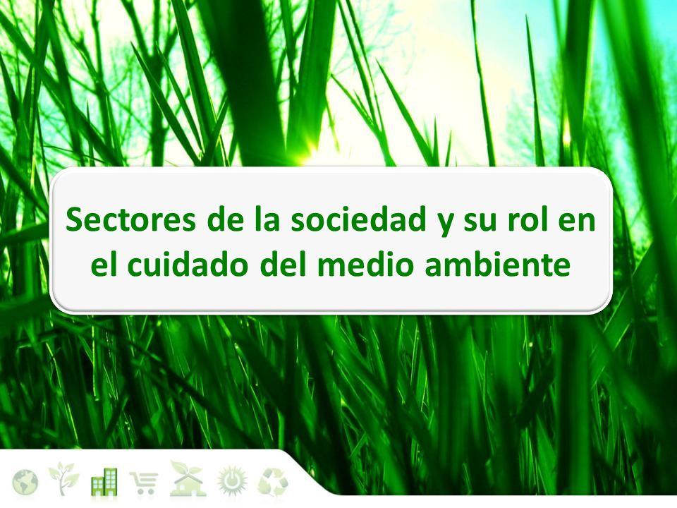 Situación medioambiental Sectores de la sociedad y su rol en el cuidado del medio ambiente