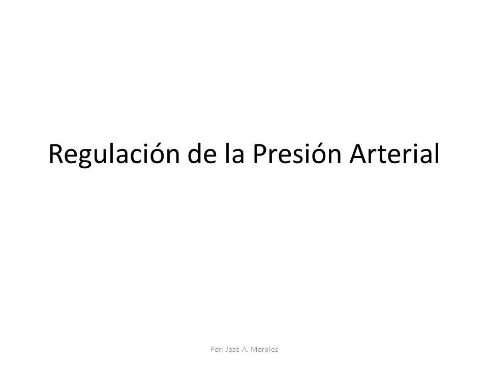 Regulación de la Presión Arterial Por: José A. Morales
