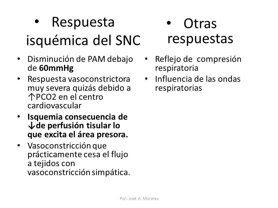 Respuesta isquémica del SNC Disminución de PAM debajo de 60mmHg Respuesta vasoconstrictora muy severa quizás debido a PCO2 en el centro cardiovascular